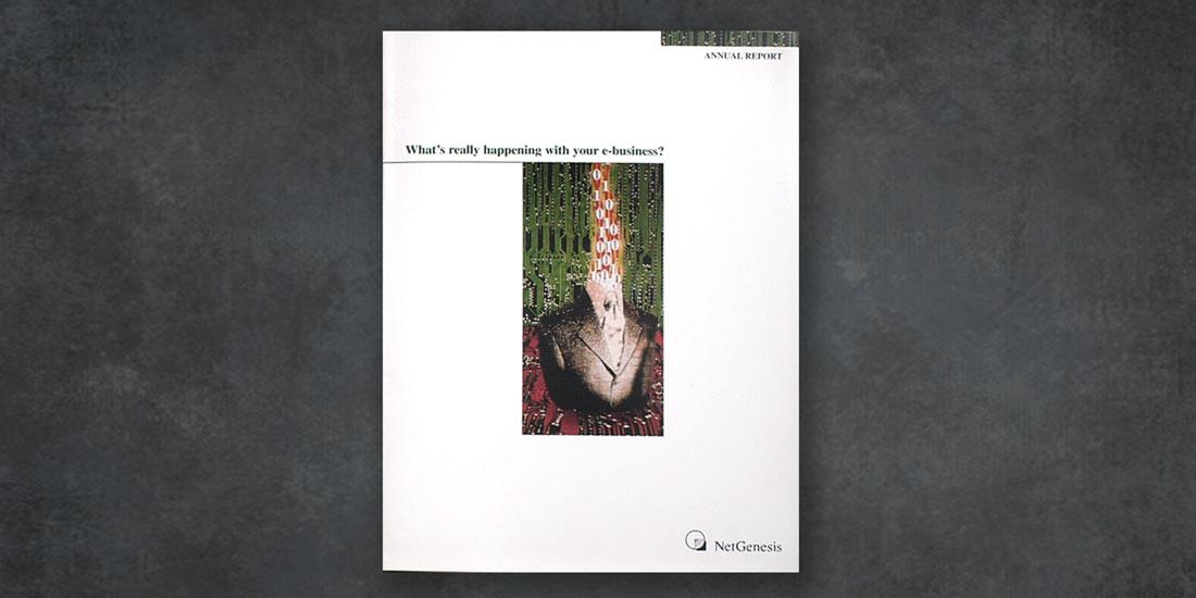 deHaas Creative portfolio: NetGenesis Annual Report
